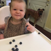 Cora loves her blueberries (well, not the sour ones).